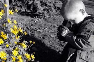little-photographer
