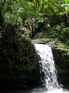 Puerto Rico2