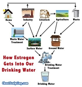 estrogeninwater