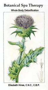 botanicalspatherapybookcover