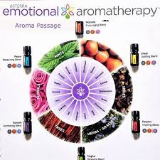 doterra-emotional-wheel-complete-02