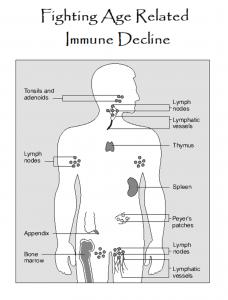 Immune decline