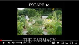 farmacyvideo